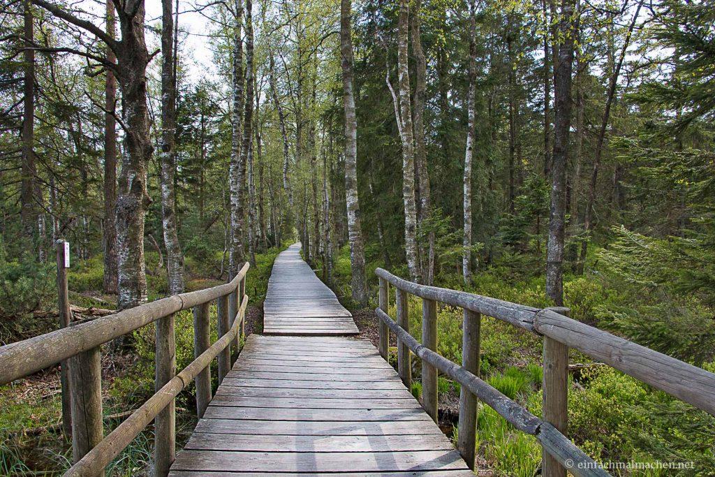 Wildsee Kaltenbronn