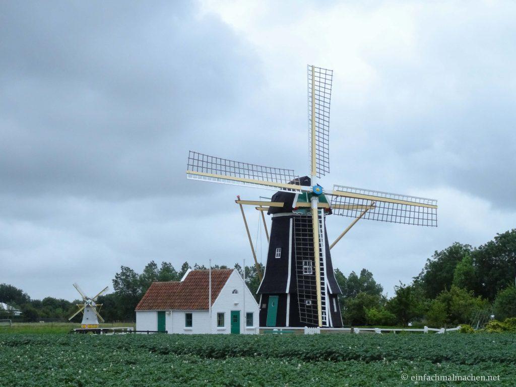 Domburg 4